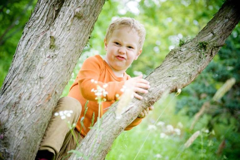 boy in orange in tree