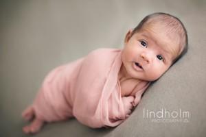 fotograf stockholm nyföddfoto, nyföddfotografering i tullinge, mellan huddinge och tumba.